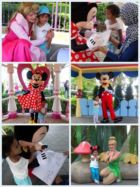 Disney Resiza---